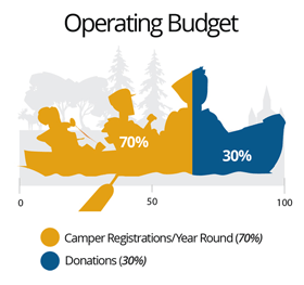 IVCF operating budget